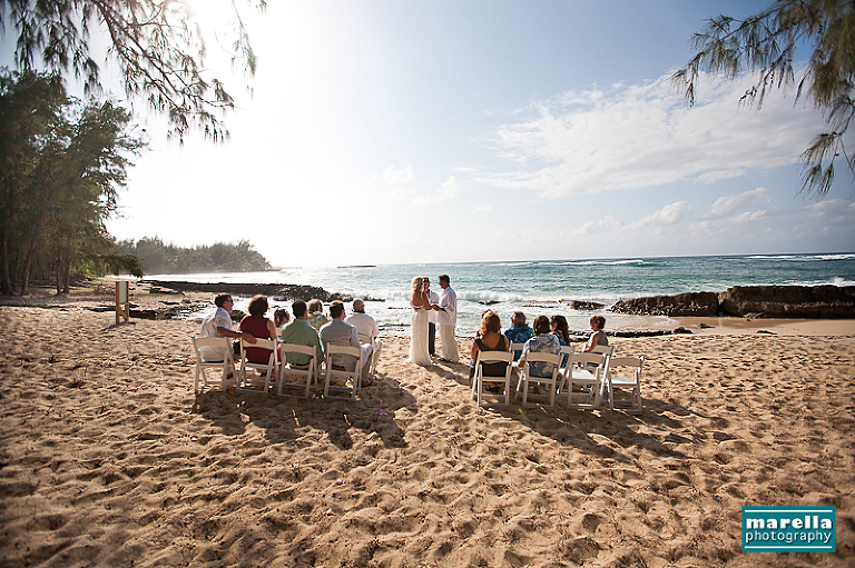 Posted In Weddings Turtle Bay Resort